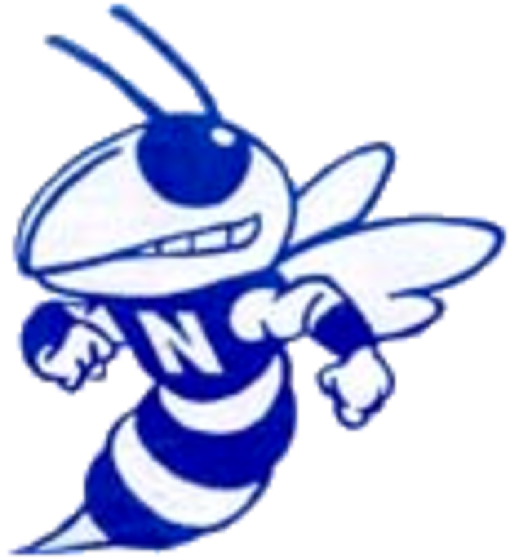 Nashville High School mascot