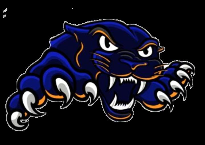 Pana High School mascot