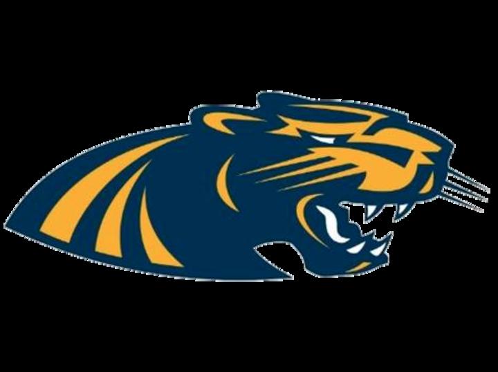Round Lake High School mascot
