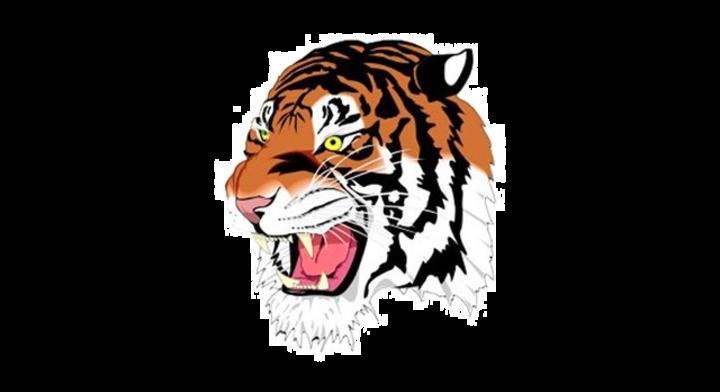 Bluffton High School mascot