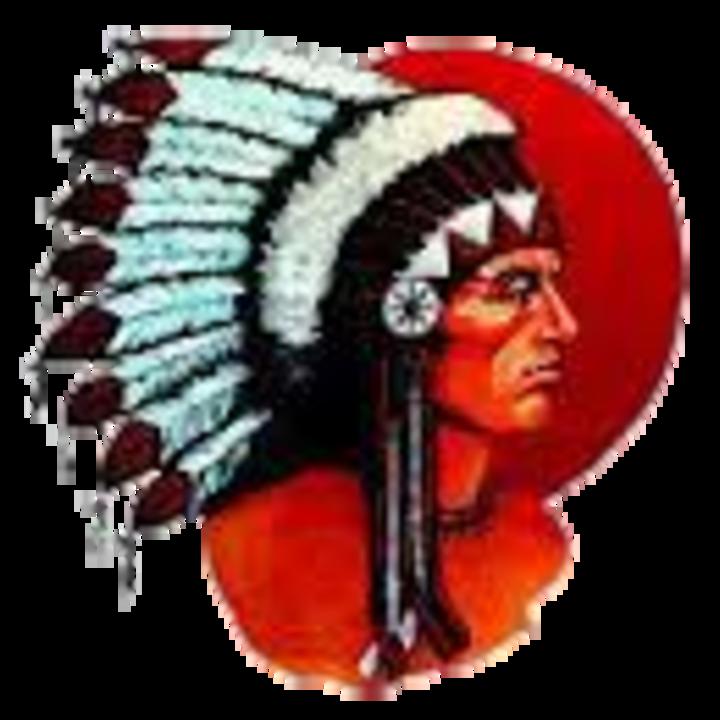 Knox Community High School mascot