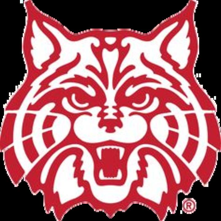 Lake View High School mascot