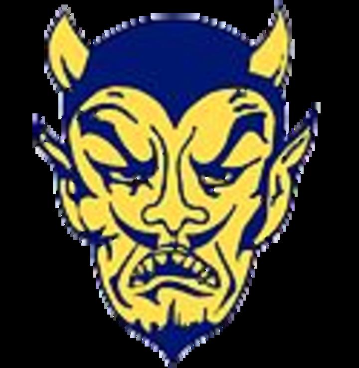 Windsor High School mascot
