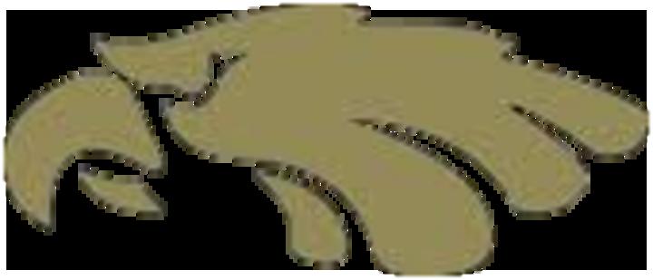 Churubusco High School mascot
