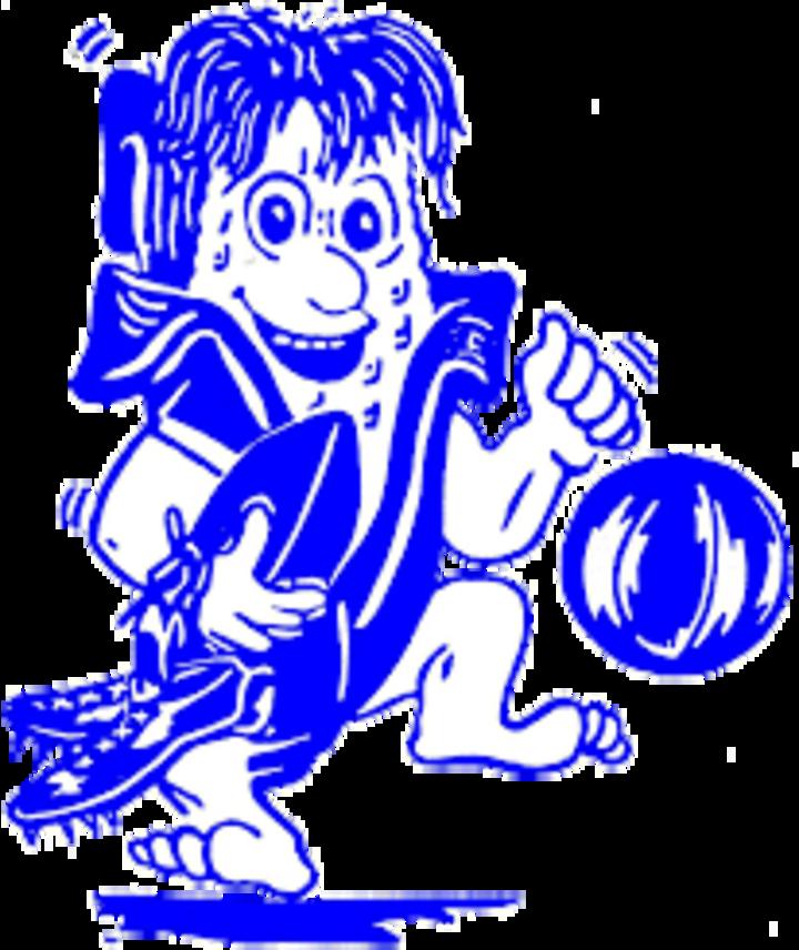 Hoopeston Area High School mascot