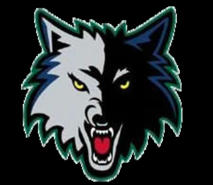 Okaw Valley High School mascot