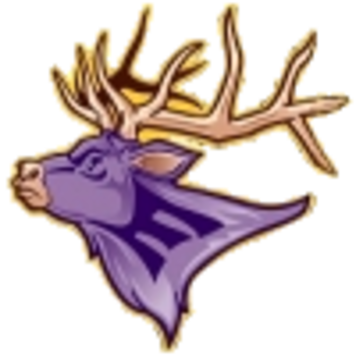 Elkton High School mascot