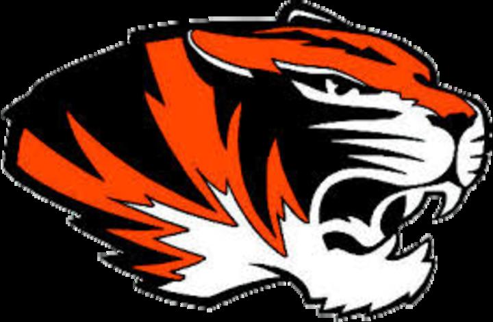 Illini Bluffs High School mascot