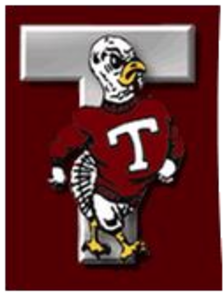 Tremont High School mascot