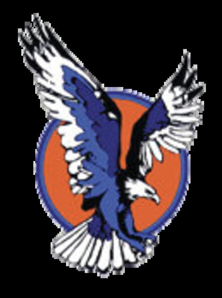 Vienna High School mascot