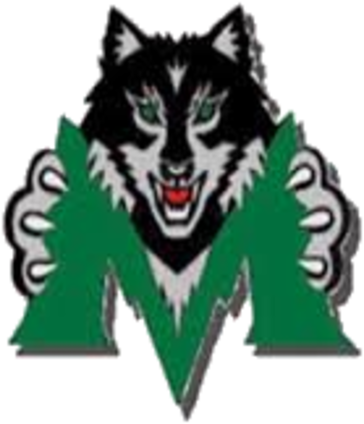 Midland High School mascot
