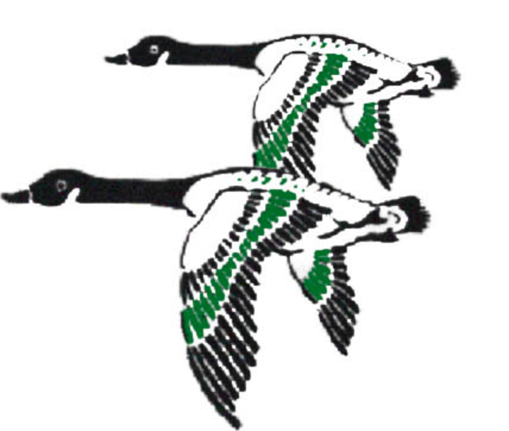 Wethersfield High School mascot