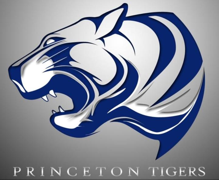 Princeton High School mascot