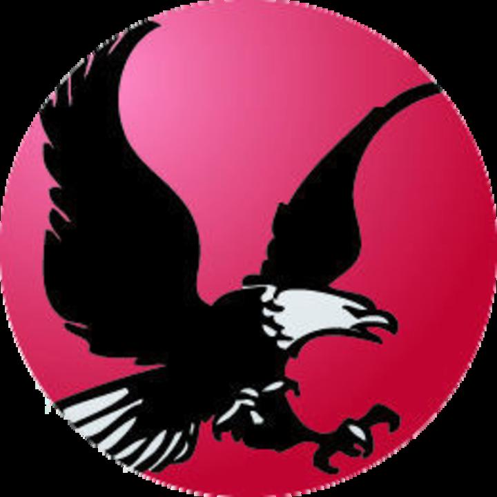 Thomas A Edison High School mascot