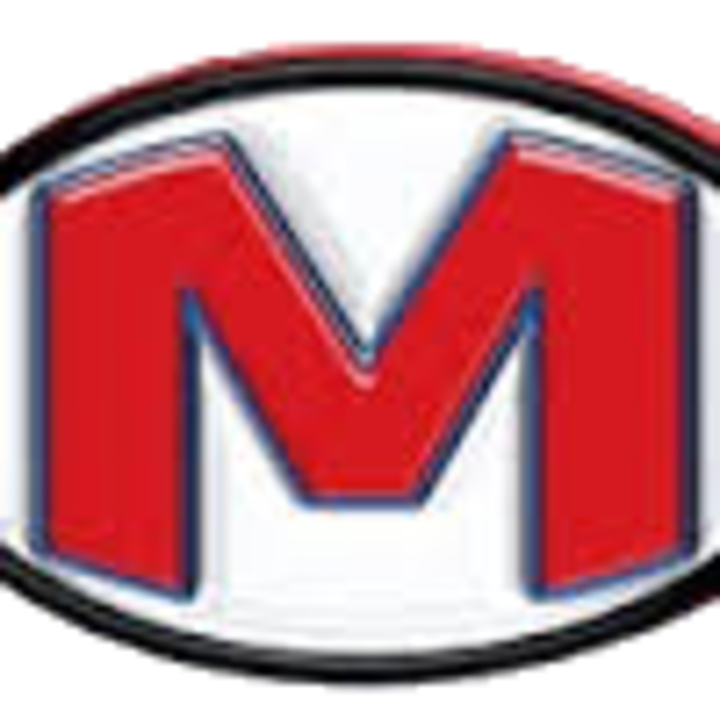 Martinsville High School mascot