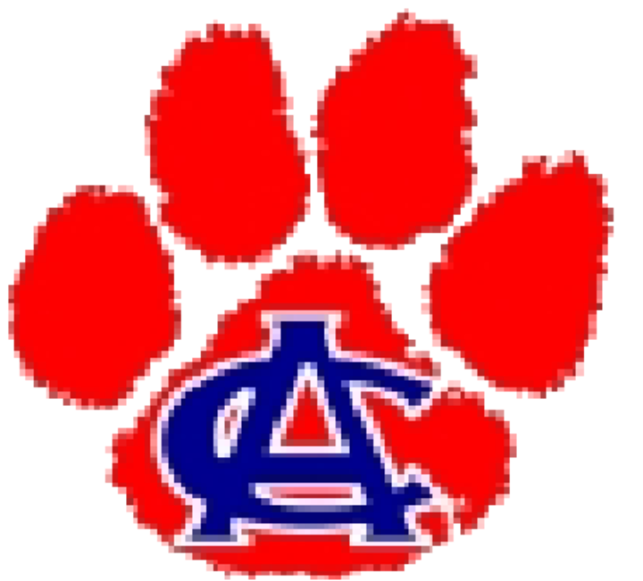 Anderson County High School mascot