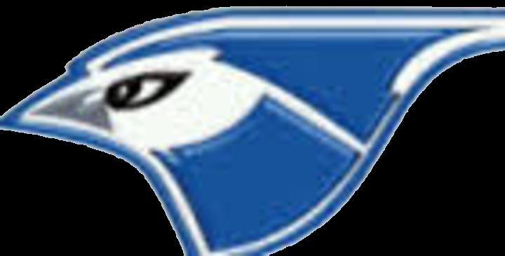 PORTA High School mascot