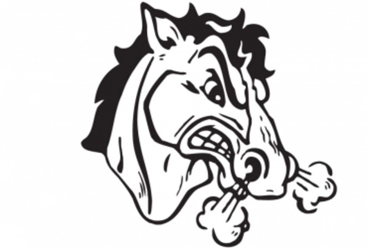 South Fork High School mascot