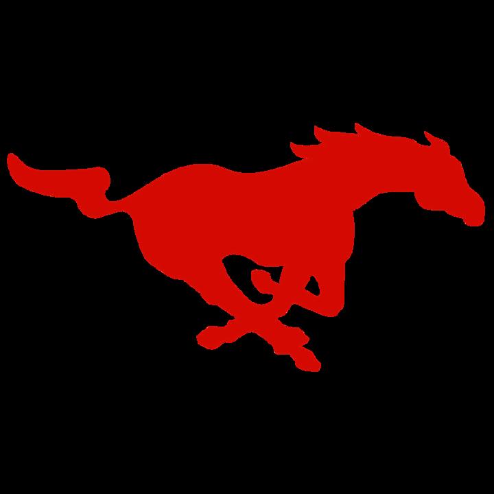 Munster High School mascot