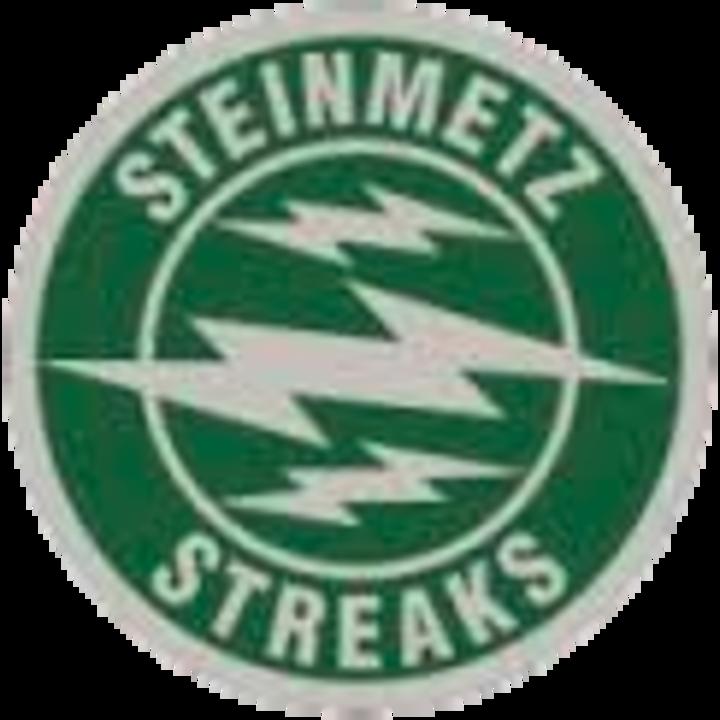 Steinmetz High School mascot