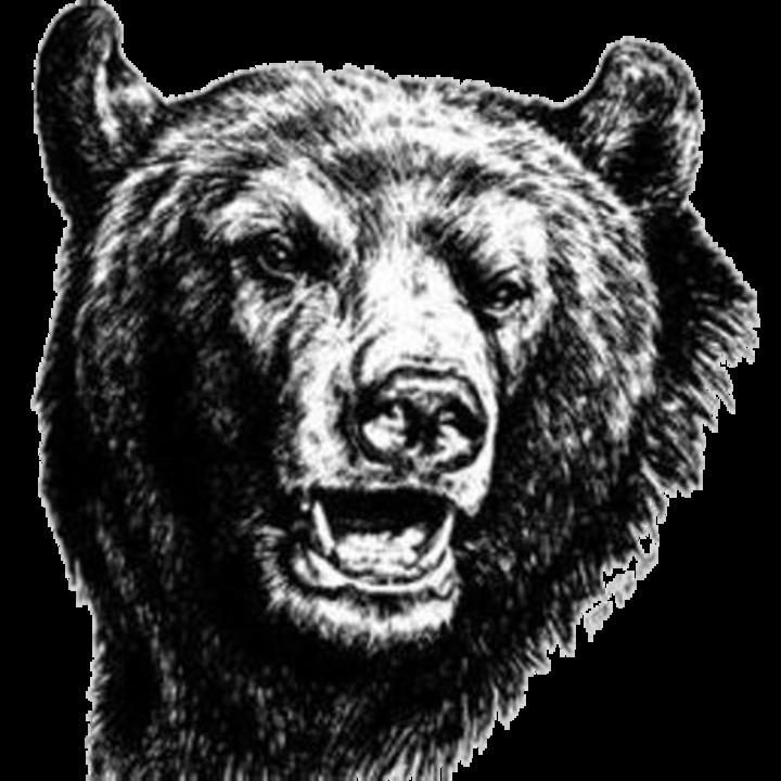 Broadneck High School mascot
