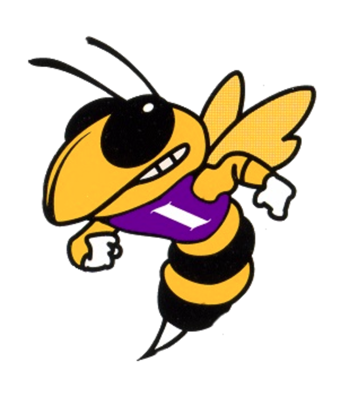 Iowa High School mascot