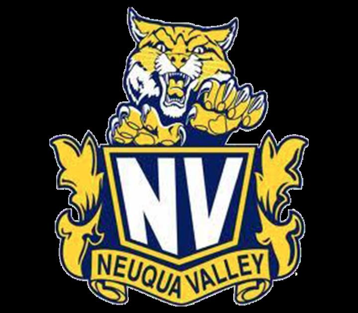 Neuqua Valley High School mascot