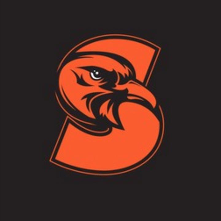 Susquenita High School mascot