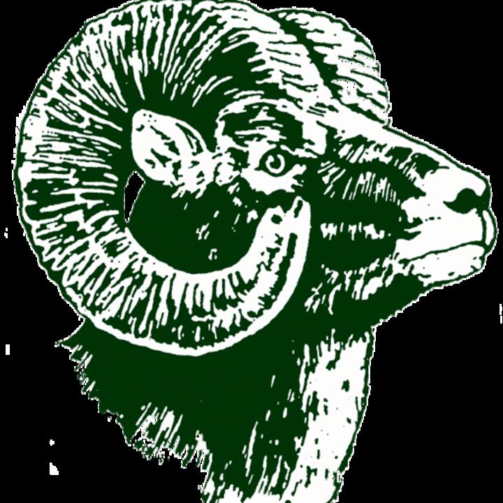 Roseau High School mascot