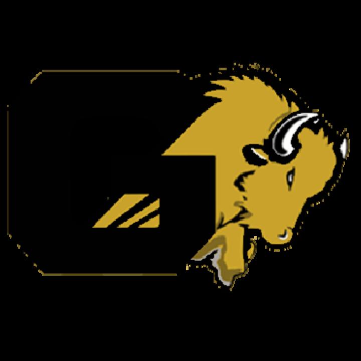 Giddings High School mascot