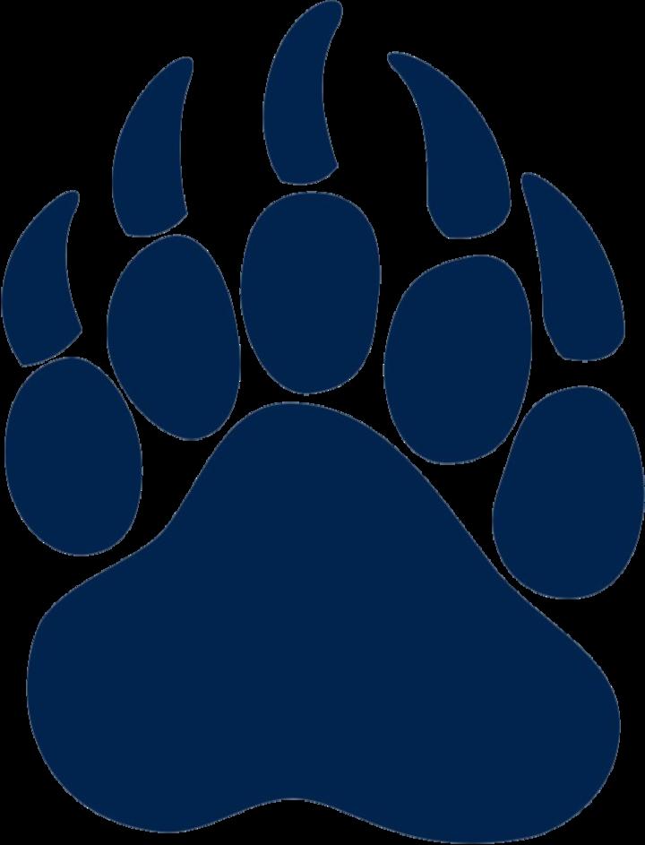 Mount Airy High School mascot