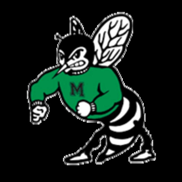 Malvern High School mascot