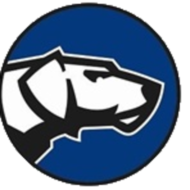 Sparrows Point High School mascot