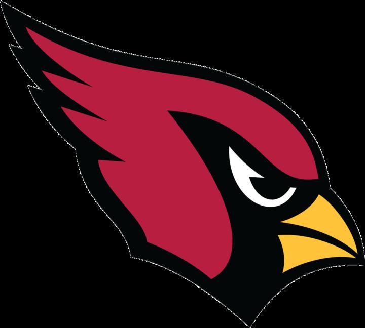 Canfield High School mascot