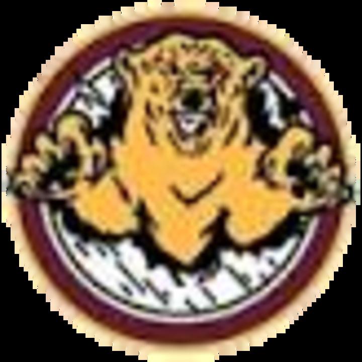 Lake Of The Woods High School mascot