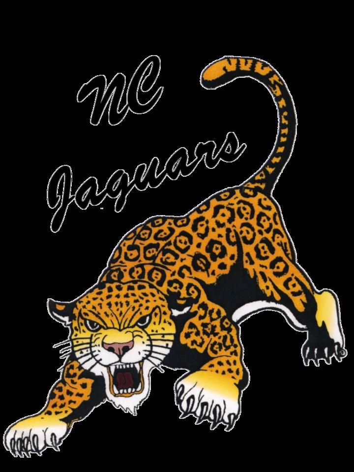 Northern Cass High School mascot