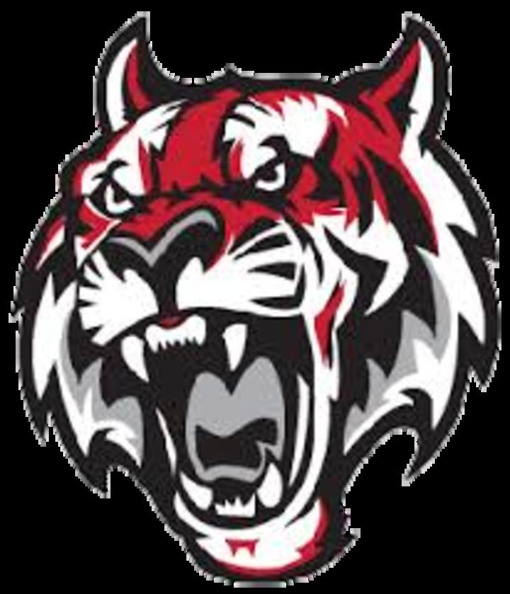 Fleetwood High School mascot