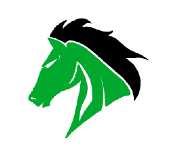 West Stanly High School mascot
