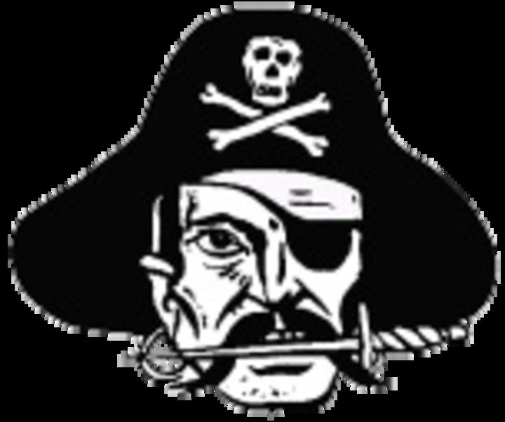 Verndale High School mascot