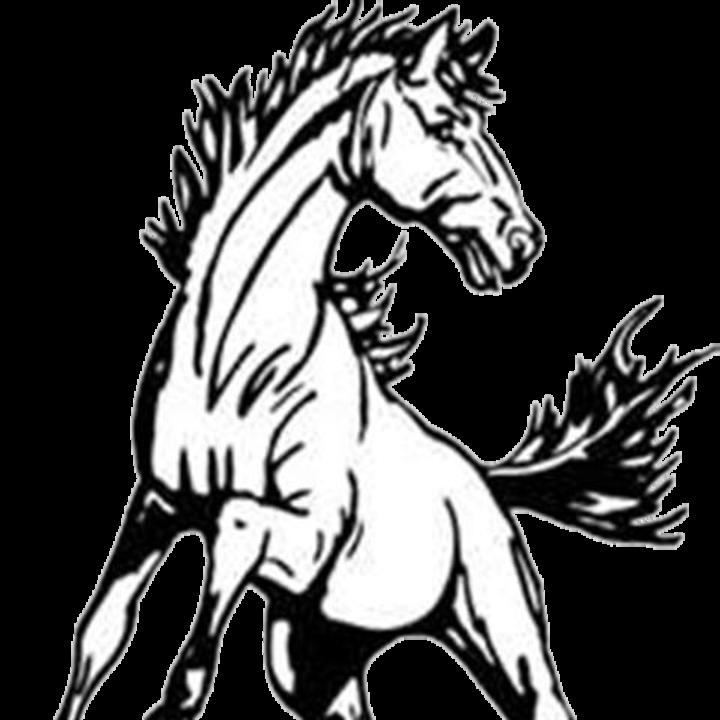 Park River High School mascot