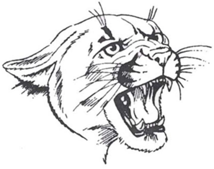 Medomak Valley High School mascot