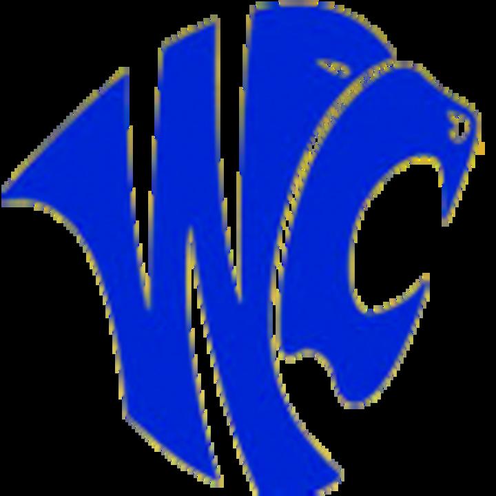 Wilson Central High School mascot