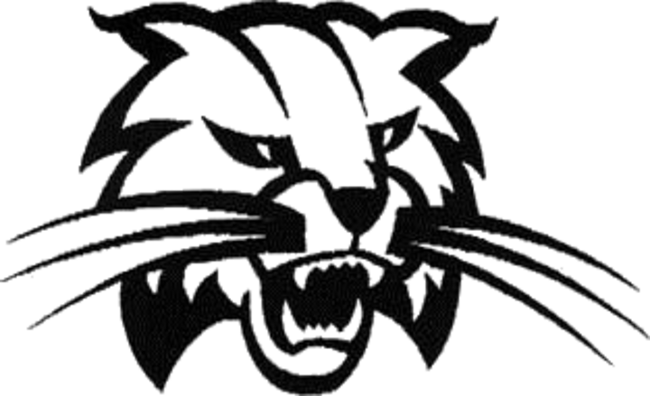 Athens Area High School mascot