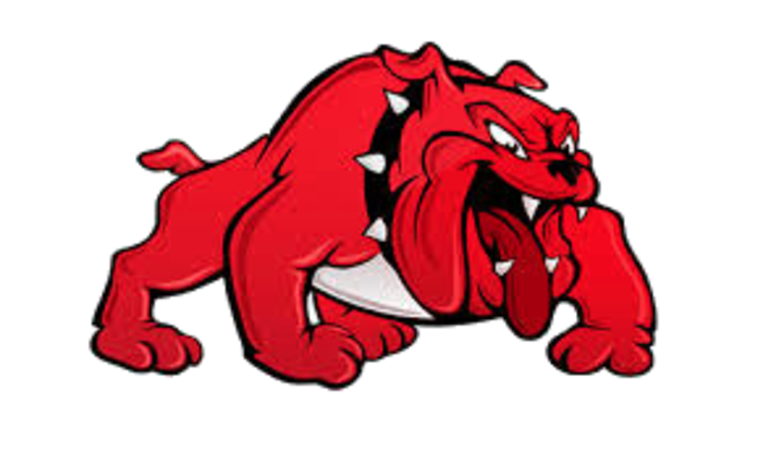 Wagoner High School mascot
