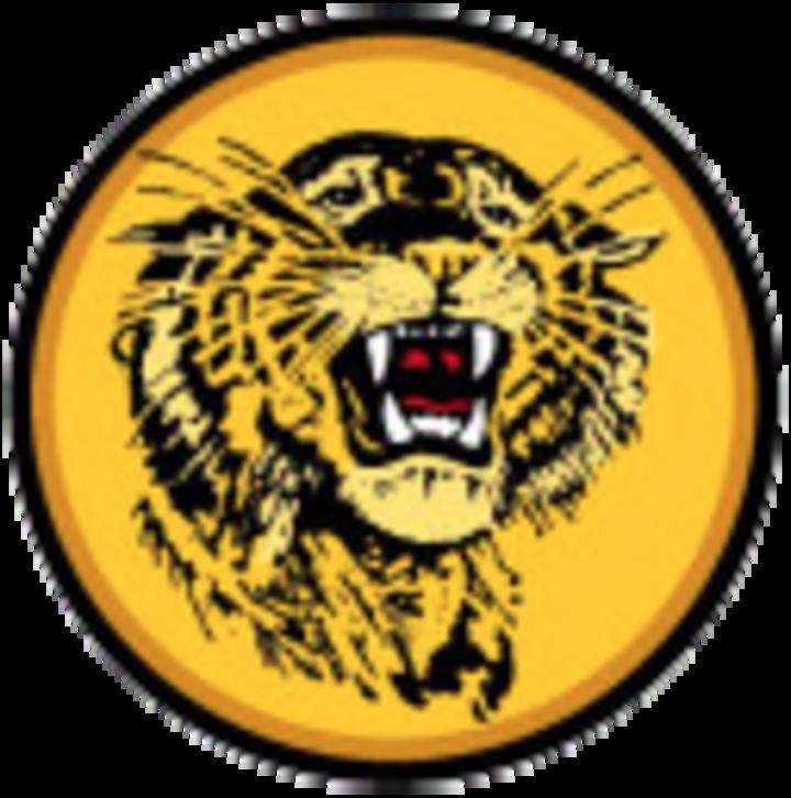 New London-Spicer High School mascot