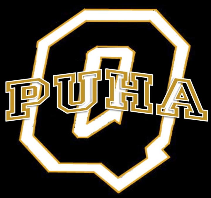 Quanah High School mascot
