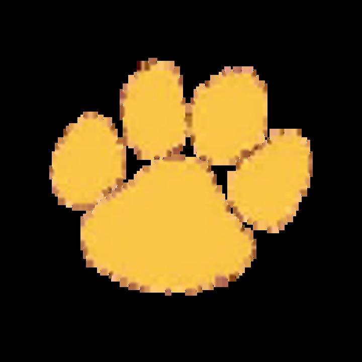 Liberty High School mascot