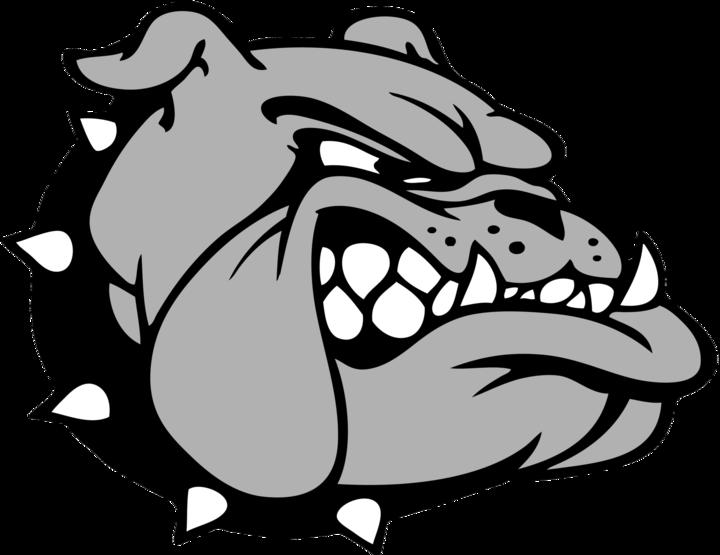 Covert High School mascot