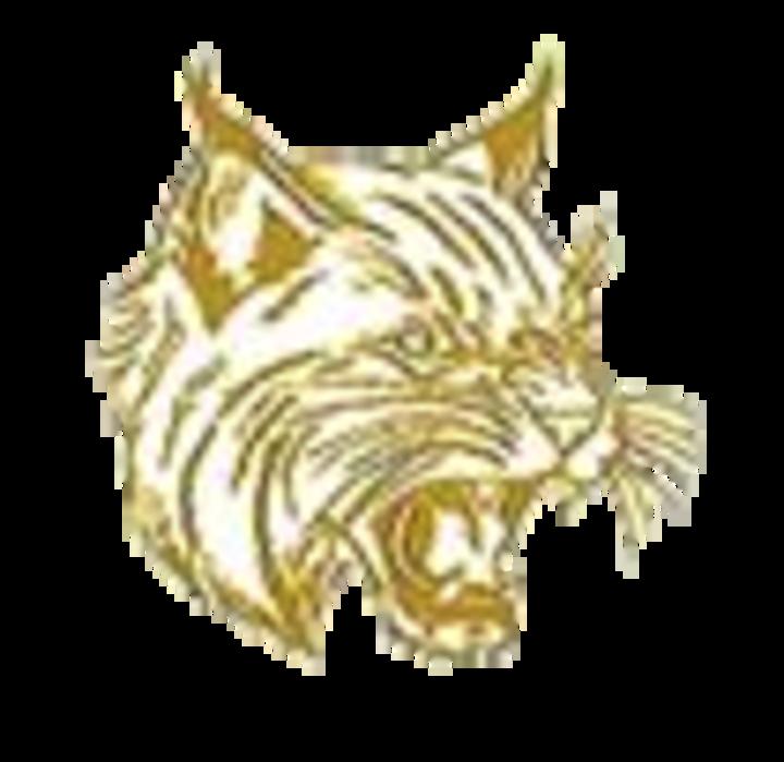 Halifax Area High School mascot