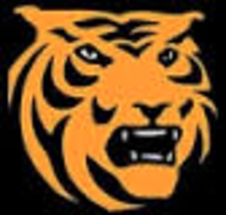 Delano High School mascot